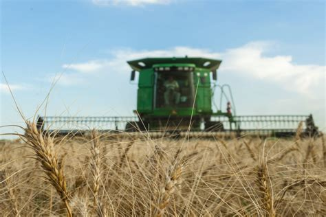 Kansas Wheat Harvest Advances Quickly 2018 06 18 Food