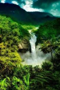 Amazon Rainforest, Brazil | Brazil | Pinterest