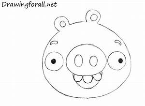 Angry Pig Face Drawing