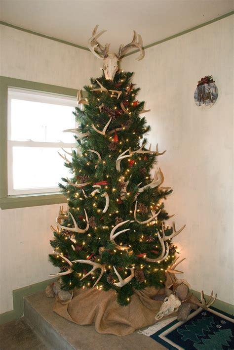 hunting christmas trees youll   season