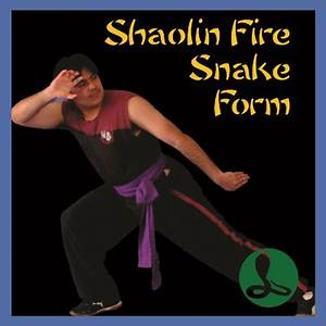 Shaolin 5 Animal Kung Fu Academy Australia; Shaolin Kung ...