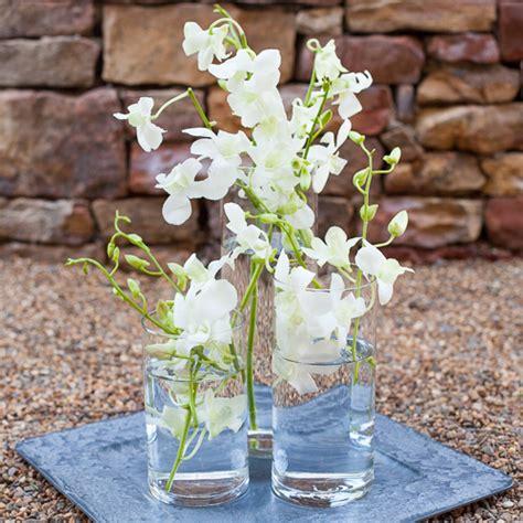 Easy Dendrobium Orchid Centerpieces Trio