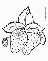 Coloring Fruits Strawberries Pages Printables Fruit Printable Colouring Strawberry Wuppsy Strawberrie Tags Find sketch template