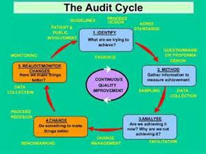 Internal Audit Process Diagram