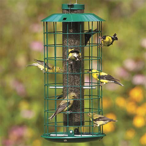 duncraft com duncraft 181m metal nyjer bird feeder