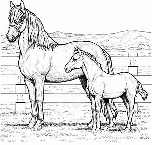 horse coloring pages printable free - free horse coloring pages