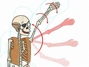 Animating The Skeleton