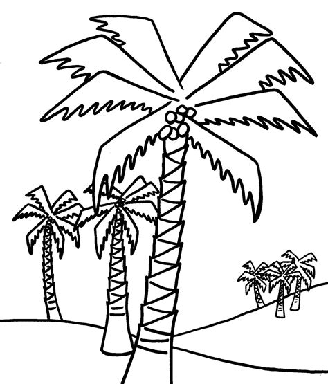 palm tree coloring pages  kids coloring home