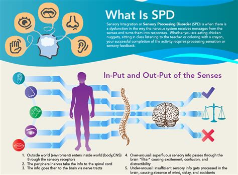 pediatric therapy for sensory processing disorder spd nspt 786 | spdthumb
