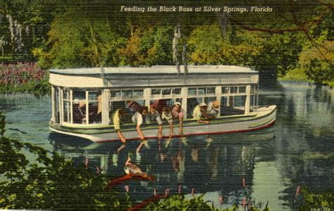 Silver Springs Glass Bottom Boat by Florida Memory Glass Bottom Boat At Silver Springs