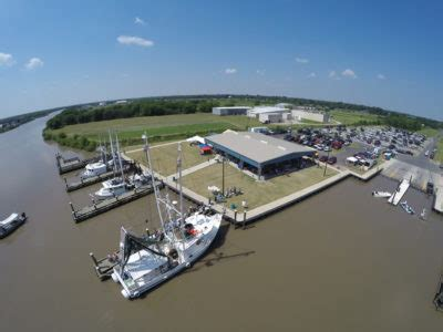 Buy Shrimp Off The Boat Louisiana 2017 by About Delcambre Louisiana Direct Seafood