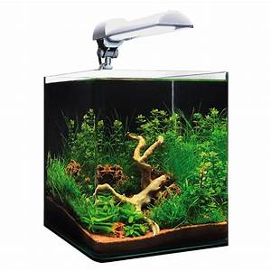 Aquarium L Form : pin nano cube dennerle on pinterest ~ Sanjose-hotels-ca.com Haus und Dekorationen