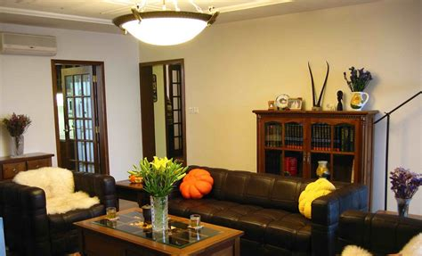 Nice-living-room-lighting-ideas-traditional-with-living