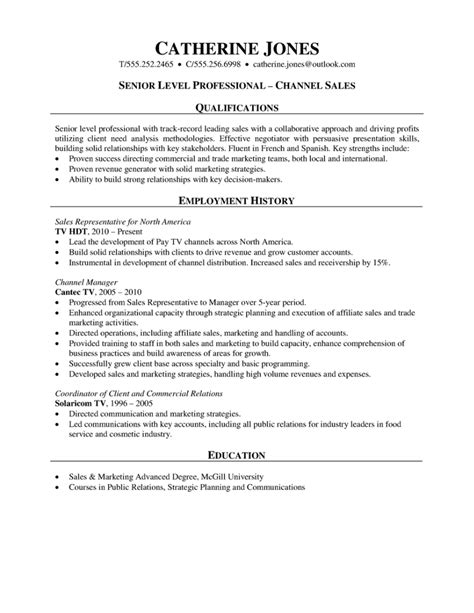 Professional Resume Sles by Sales Professional Resume Channel Sales