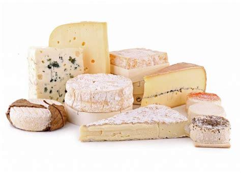 fromage a pate molle enceinte produits hainaut terre de go 251 ts