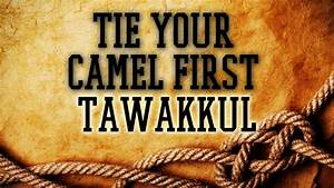 TIE YOUR CAMEL ... Allah Tawakkul Quotes