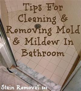 cleaning and removing mold mildew in bathroom With how to clean fungus in bathroom