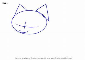 How To Draw A Arctic Fox Step By Step