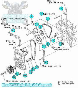 1994 Nissan Sunny Timing Chain Component  Ga16de Engine