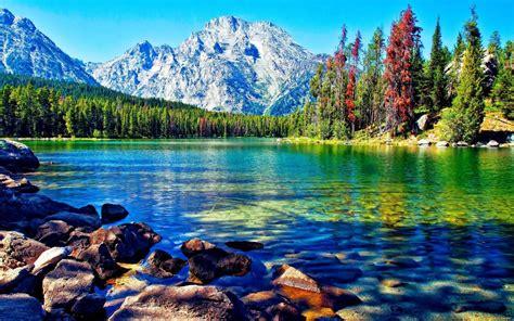 Beautiful Lake Mountain Forest Desktop Wallpapers ...