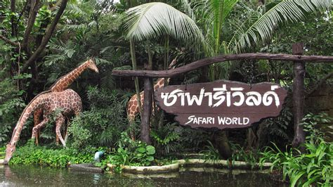 Worlds In Words bangkok safari world discounted tickets kkday