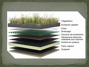 Toiture vegetalisée Atelier de Construction
