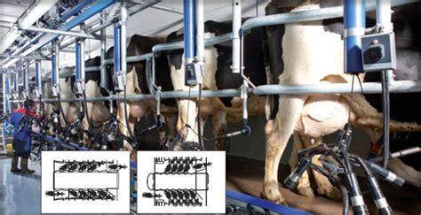 salle de traite angers maine et loire 49 233 quipement delaval vache brebis ch 232 vre