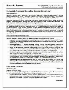 17 best ideas about sales resume on pinterest marketing for Software executive resume