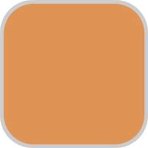 Paint Color Pumpkin by 1000 Images About Pumpkin Orange Paint Colors On