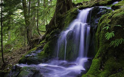Waterfall Hd Wallpaper Background Image 2560x1600 Id152127 Wallpaper Abyss