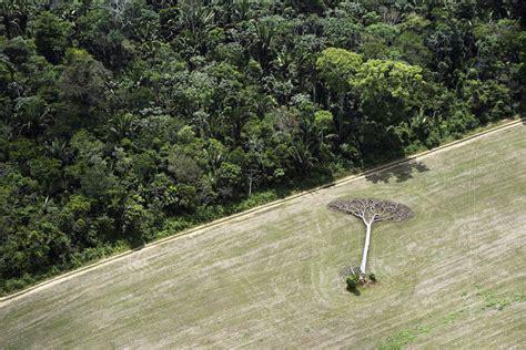 dramatic aerial landscape    impact  nature