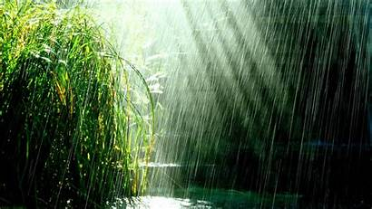 Rain Tropical Weather Storm Water Relaxing Atmosphere