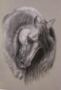 Beautiful Wild Horse Pencil Drawings