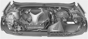 Hyundai Sonata  Engine Compartment