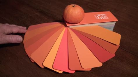 Wandfarbe Orange Töne by Welche Farbe Passt Zu Orange