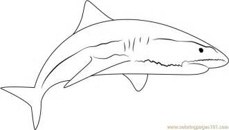 Sand Tiger Shark Coloring Pages
