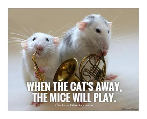 When the cat's away the mice will play example