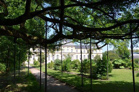 Botanischer Garten Bonn Bfd freiwilligendienst nabu nrw