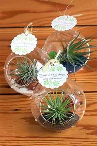 Air Plant Wedding Favors - Weddings Ideas from Evermine