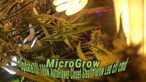 100w closet stealth grow box marijuana diy led cfl cmd
