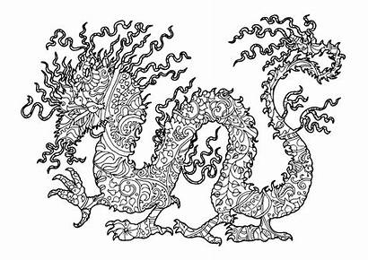 Coloring Pages Dragons Complex Dragon Adult Adults