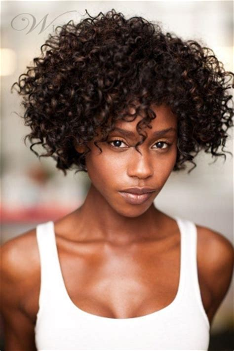 Curly Hairstyles For Black Hair by Human Hair Curly Wigs For Black Hairstyle For