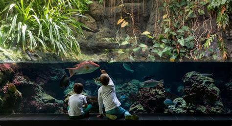 zoo aquarium berlin indoor aktivitaeten fuer kinder