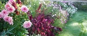 Bulbes D été : arracher les bulbes d 39 t une fois d fleuris ~ Melissatoandfro.com Idées de Décoration