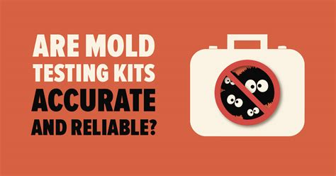diy mold testing  professional services mold busters