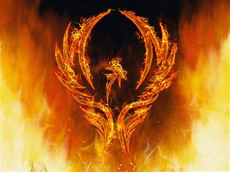 Phoenix Rising Stock Photo - Download Image Now - iStock