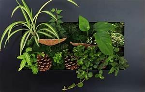 Tableau Végétal Mural : tableau v g tal caract ristiques achat et prix ooreka ~ Premium-room.com Idées de Décoration
