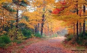 Autumn New England Fall Foliage