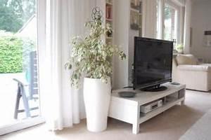 Pflanzgefäße Für Draußen : exklusive pflanzgef e online kaufen ae trade ~ Orissabook.com Haus und Dekorationen