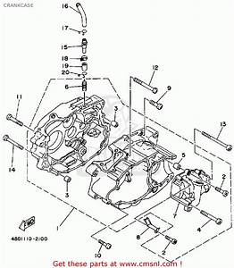 Yamaha Timberwolf 250 Engine Diagram